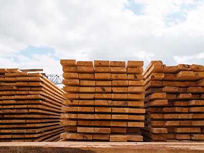 Legislature promotes timber industry as carbon-negative