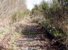 BNSF Eastside Rail Corridor Delay